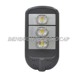 Đèn đường LED D13-125